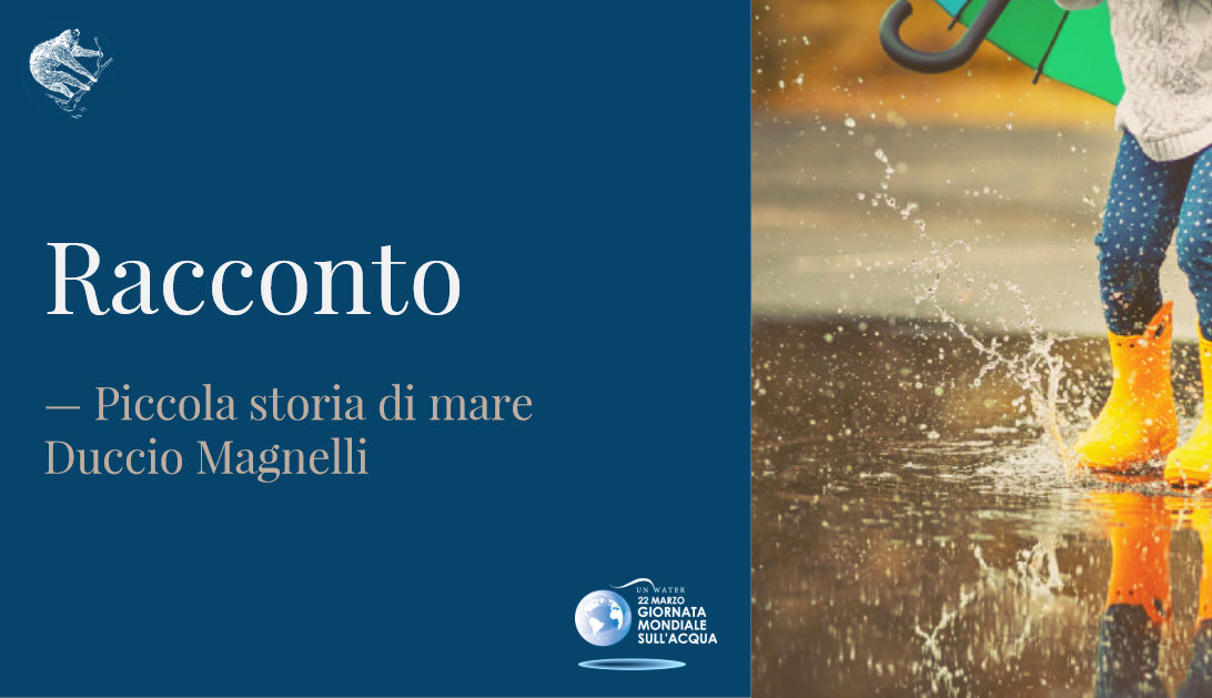 Duccio Magnelli